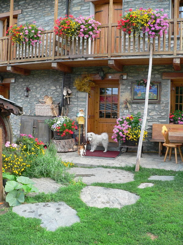Bed & Breakfast - Appartamenti - Petit Coin de Paradis - Vetan (AO) - Casa rurale